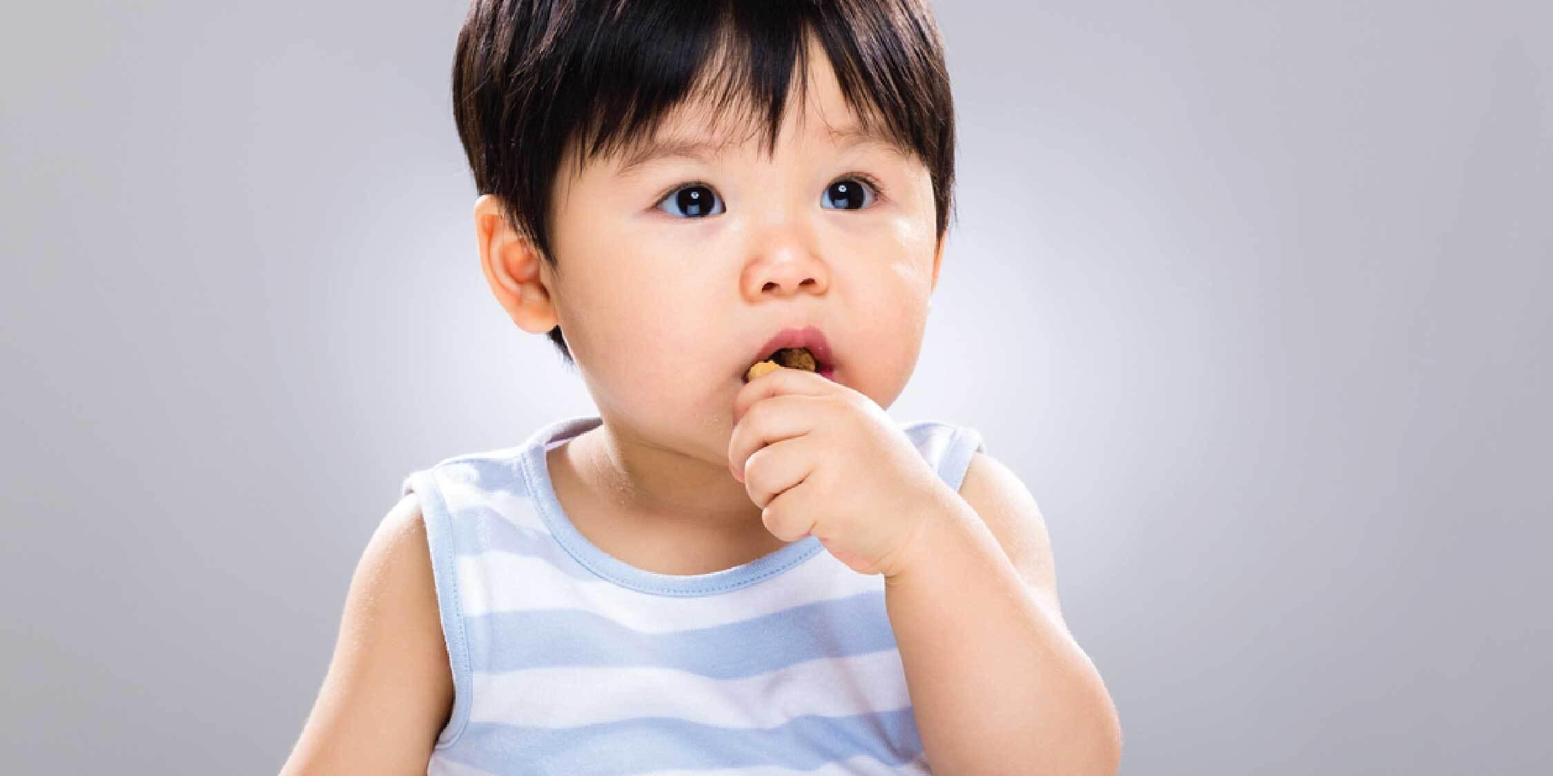 Nutrisi Terbaik Untuk Mpasi Anak 1 Tahun