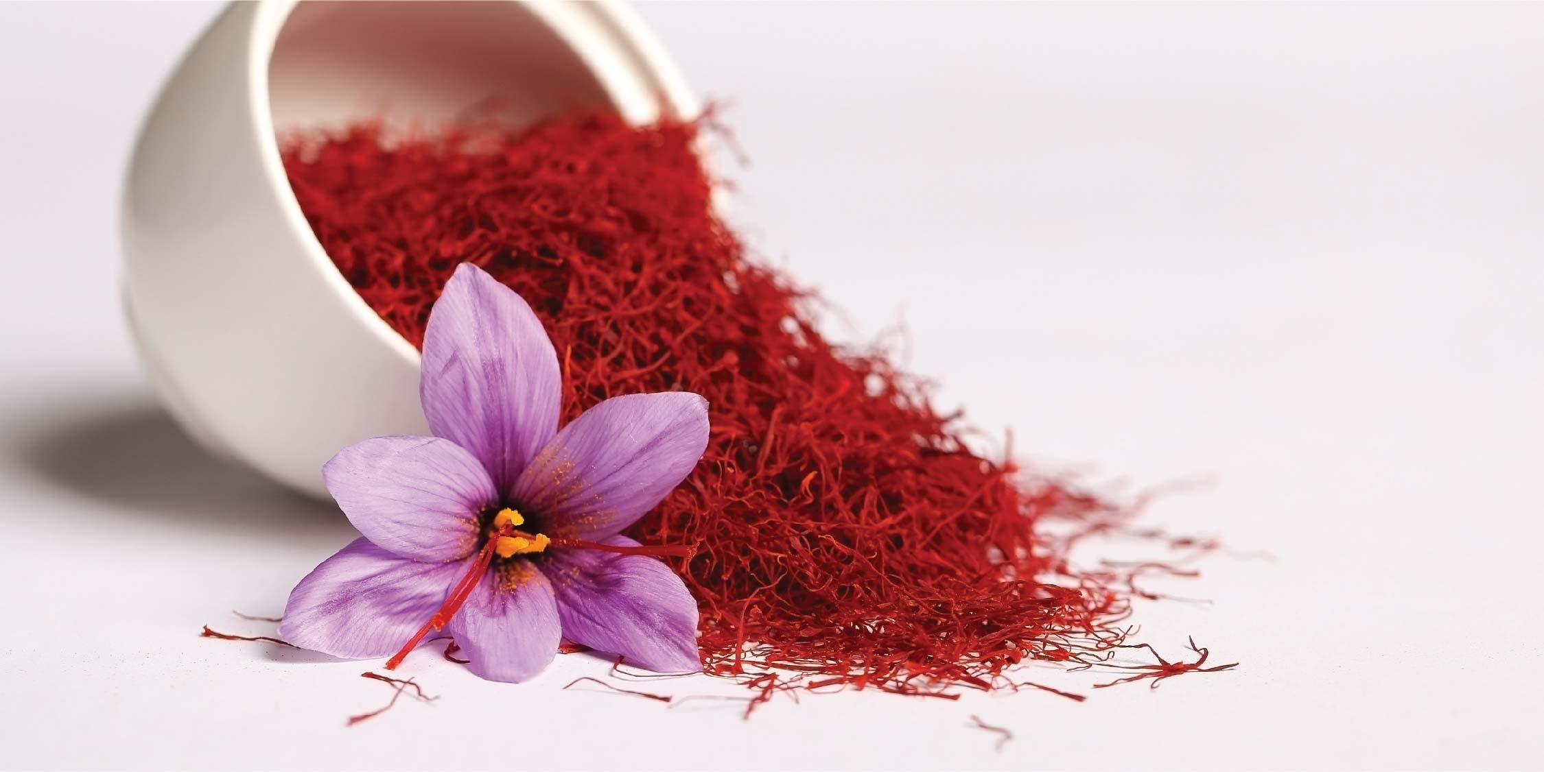Bunga Saffron Rempah Termahal di Dunia yang Baik untuk